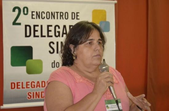 sindjustica goias encontro delegados sindicais 2013 02